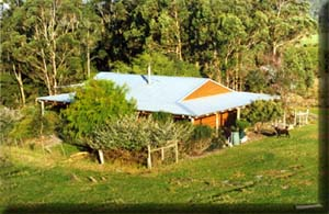 CINNAMON COLOUREDS FARMSTAY (copyright image)