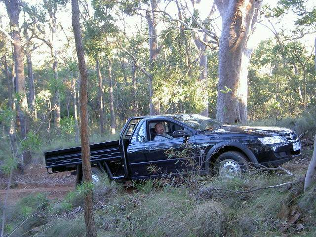 Holden One-Tonner Cross 6. Location: Mt Sugarloaf NSW